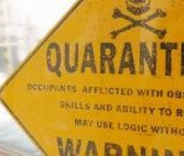 Image result for quarantaine